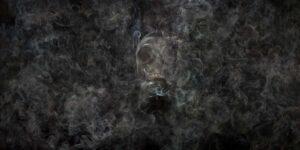 Resiliencias-contaminates-2013